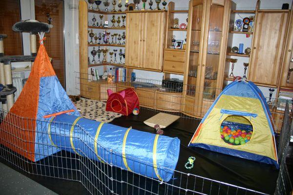 Ber ideen zu indoor spielplatz auf pinterest for Raumgestaltung aue